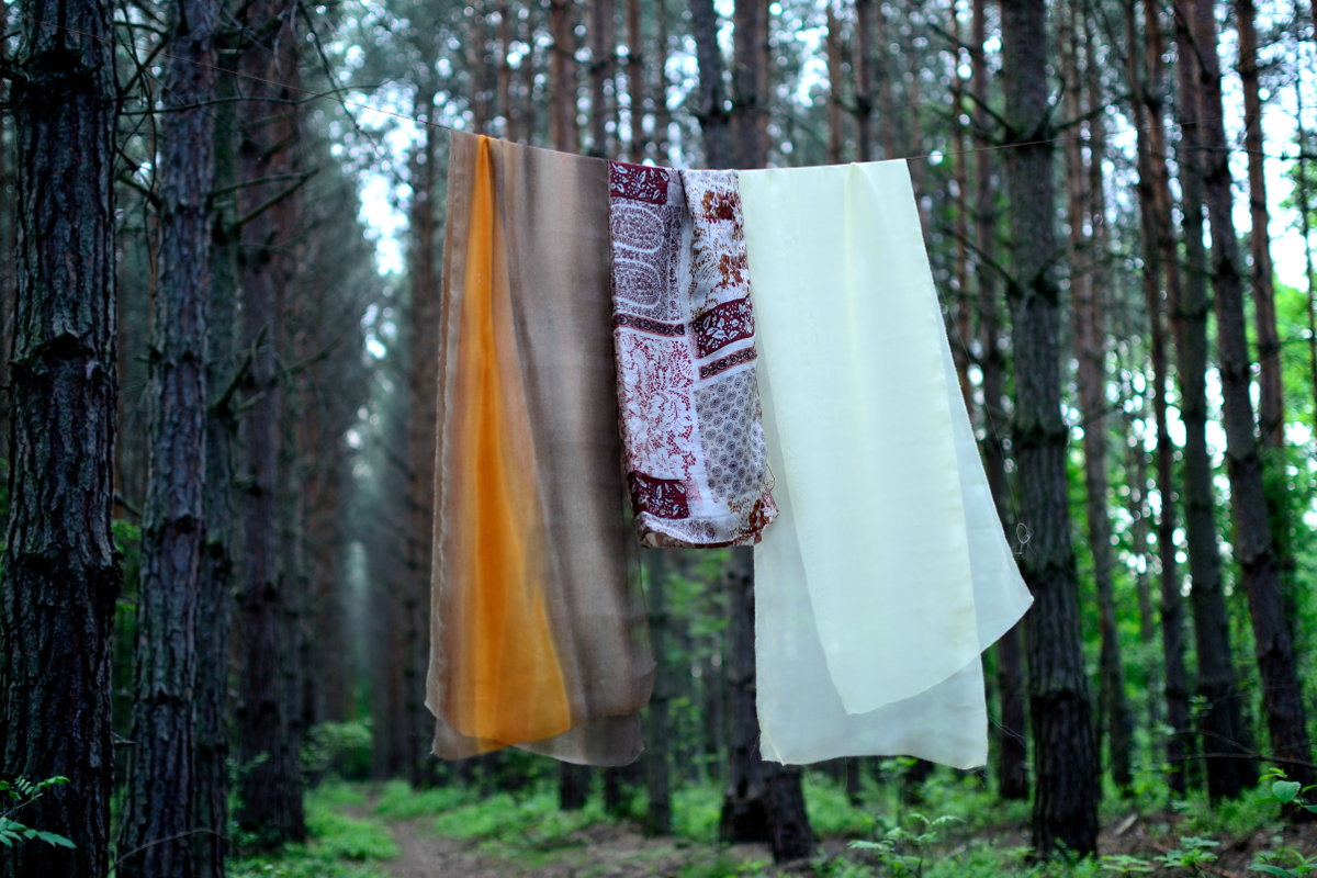 Silk in the forest