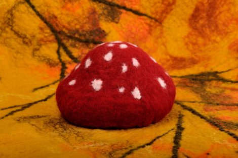 Newborn baby photo prop toadstool hat